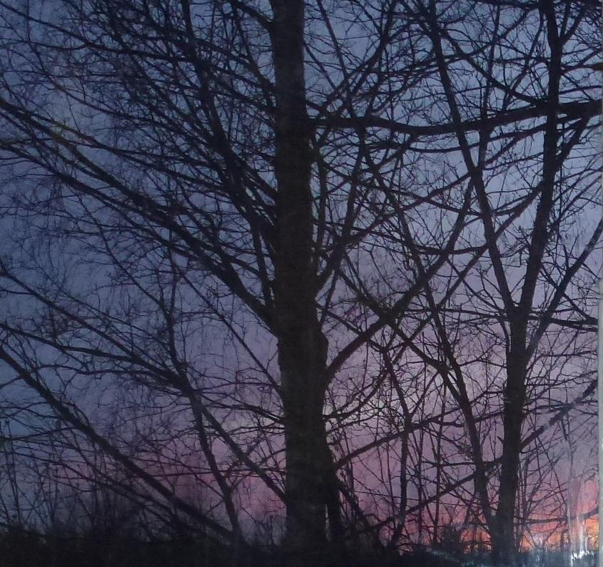 sky17.20 am 7.2.16
