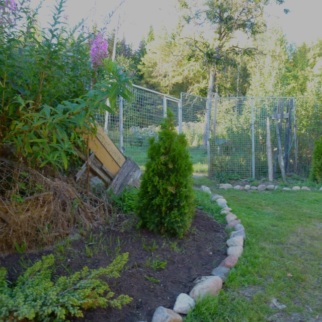 entrance for dog garden